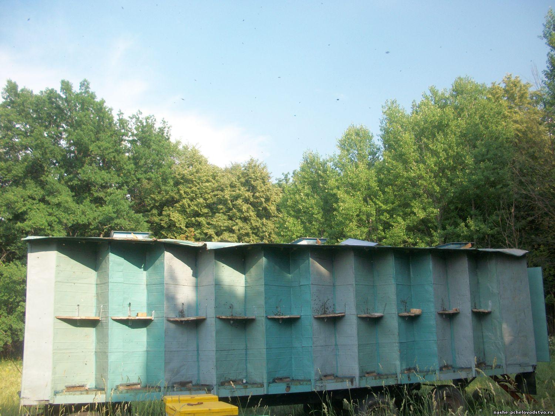 Пчеловодческий павильон с домиком